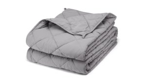 the Bear weighted Blanket