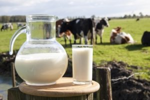 Image: pitcher of milk with a glass