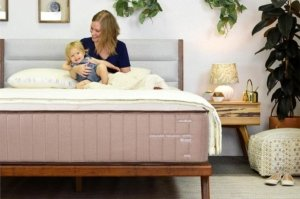 View of the Nest Bedding Alexander Series Mattress in a room setting