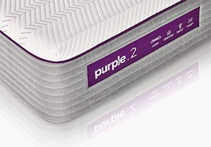 the new purple's cover