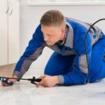 How to Handle Bedbugs Smartly and Effectively