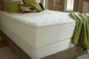 Closeup of the PlushBed Botanical Bliss mattress