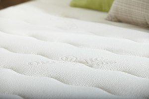 the PlushBeds Botanical Bliss mattress cover