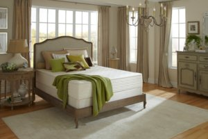 the plushbed mattress in a classic room