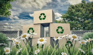 recycling boxes in a meadow