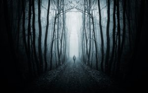 Image: the shadow of a man appears in a lane of dark trees