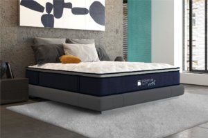 The Signature Sleep Reset reviewed on a white carpet