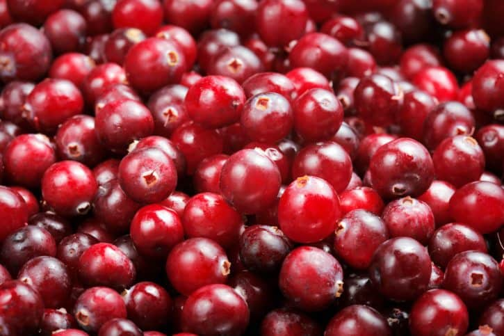cranberry benefits, cranberry month, Mindful Living Network, Mindful Living, Dr. Kathleen Hall, The Stress Institute, OurMLN.com, MLN, Alter Your Life, Mindful Eating Everyday