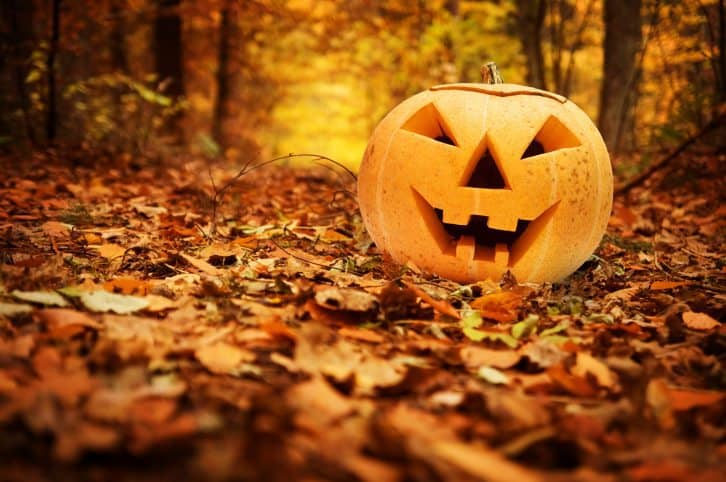 Halloween, Mindful Living Network, Mindful Living, Dr. Kathleen Hall, The Stress Institute, OurMLN.com, MLN, Alter Your Life, Pumpkin