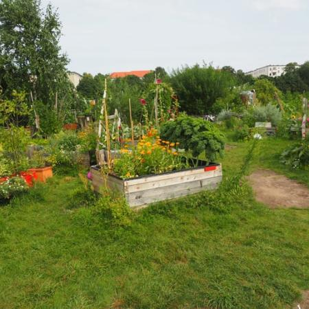 Incredible Edible: The Start of a Self-Sufficient British Town