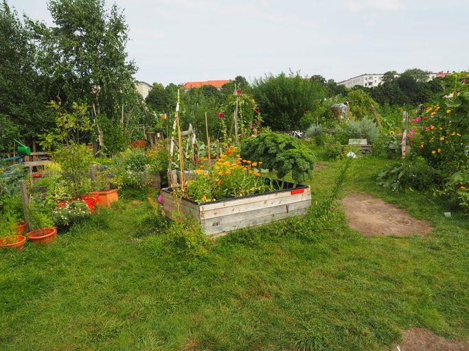 rebel gardening movement, Incredible Edible, self sufficient town,