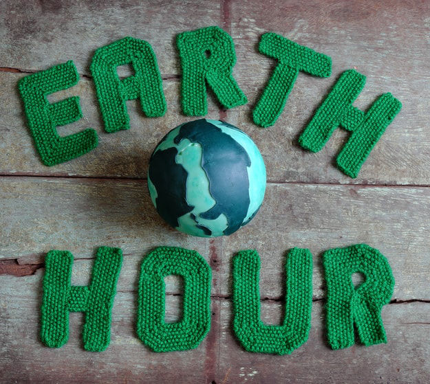 earth hour, world wildlife fund