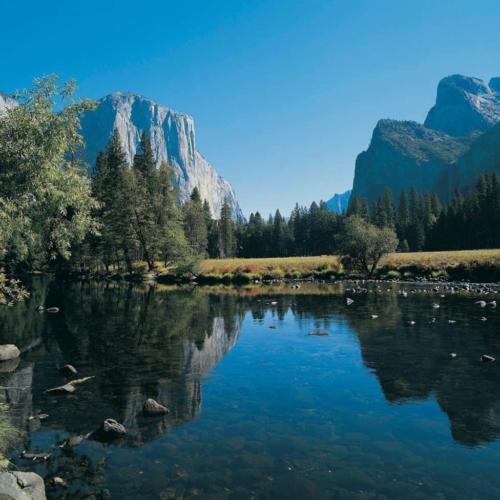 Mindful Travel Series: National Parks