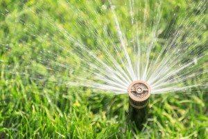 automatic sprinkler watering fresh lawn