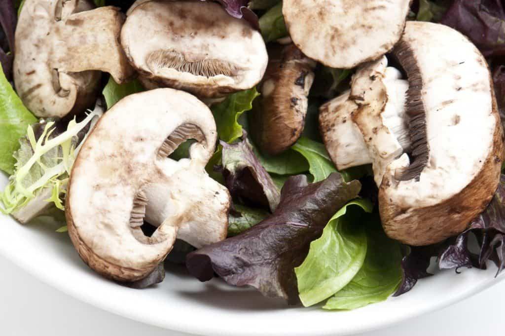 mushroom, salad, healthy, mushroom recipe