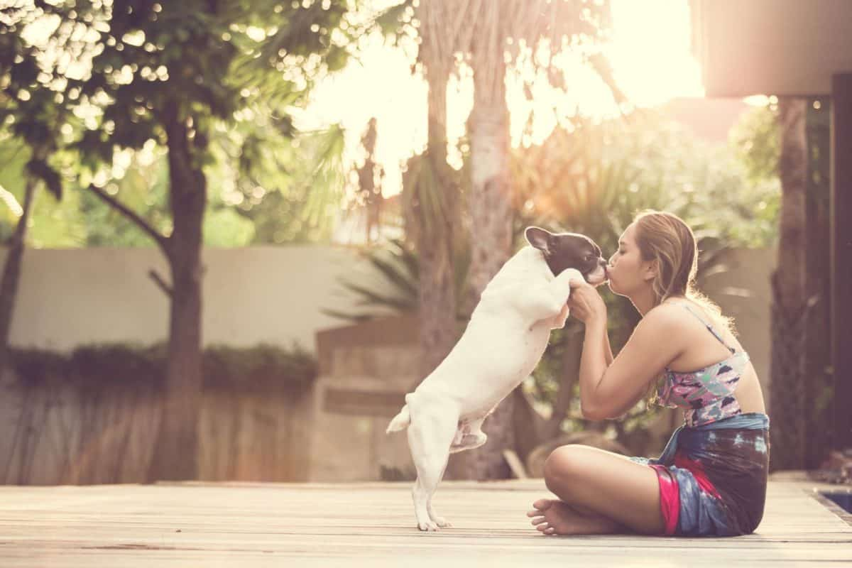 love your pet day, love your pet