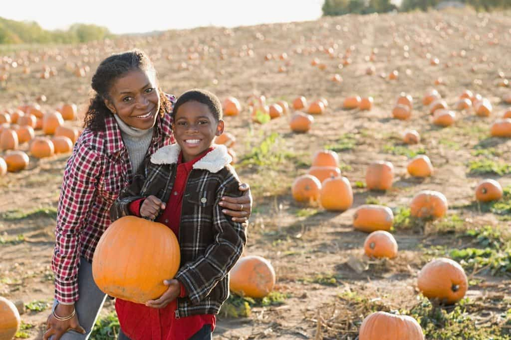 national pumpkin day, pumpkin day