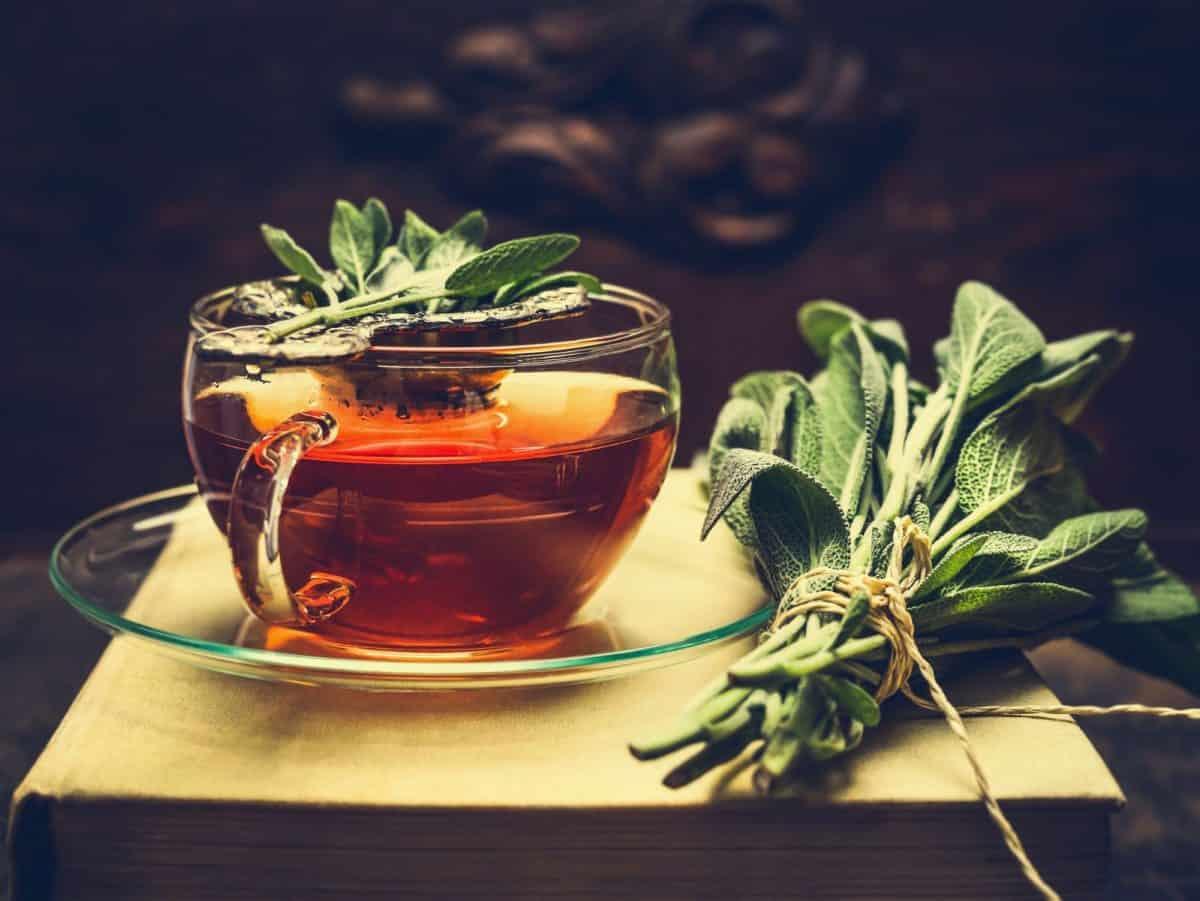 international tea day, tea day, tea