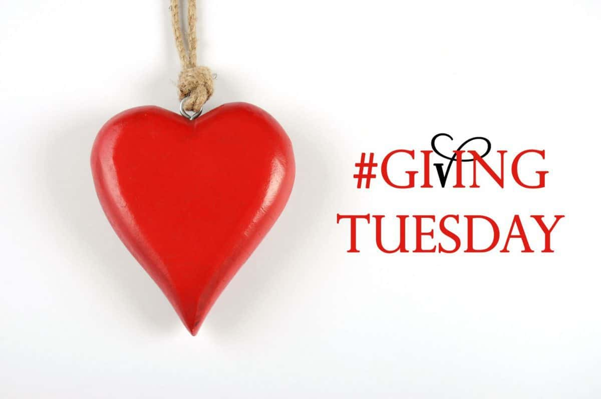 givingtuesday, day of giving, charity, volunteering, giving tuesday