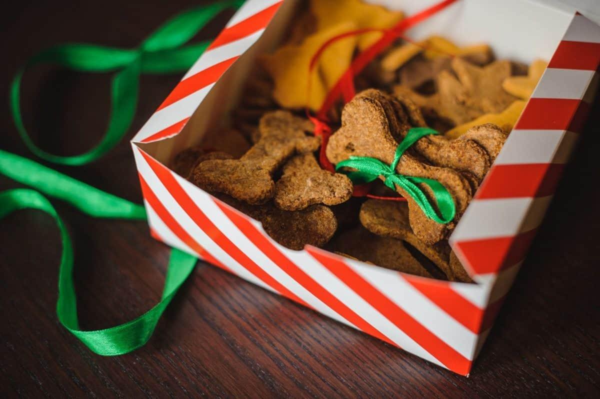 holiday treats, pet treats, seasonal treats