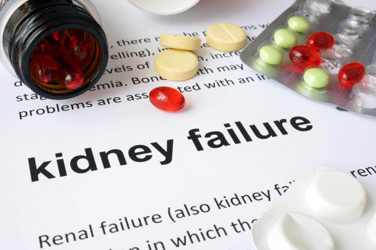 chronic kidney disease, kidney health, national kidney month