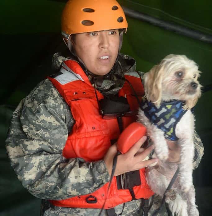 disaster relief fund, hurricane harvey