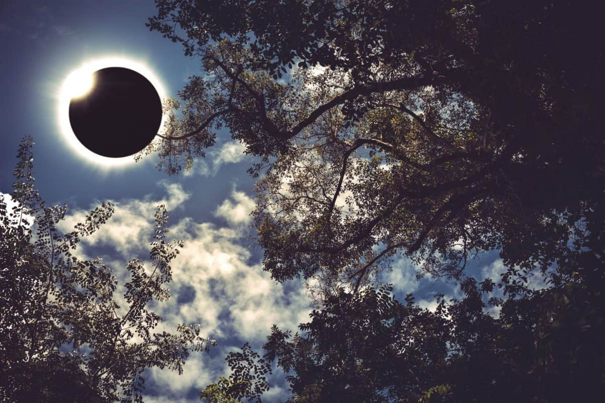 Amazing scientific natural phenomenon. Diamond ring, prominence and internal corona. Total solar eclipse glowing on blue sky above silhouette of trees, serenity nature. Abstract fantastic background.
