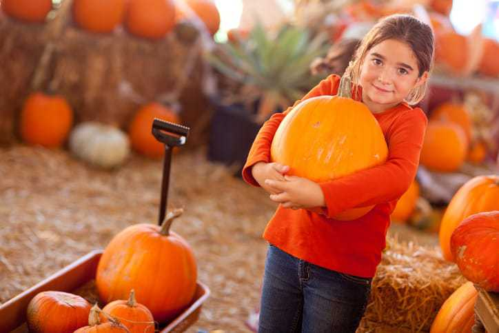 fun fall activities, fall things to do