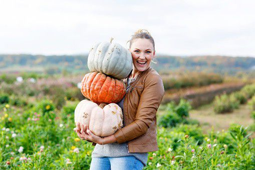 National Pumpkin Month