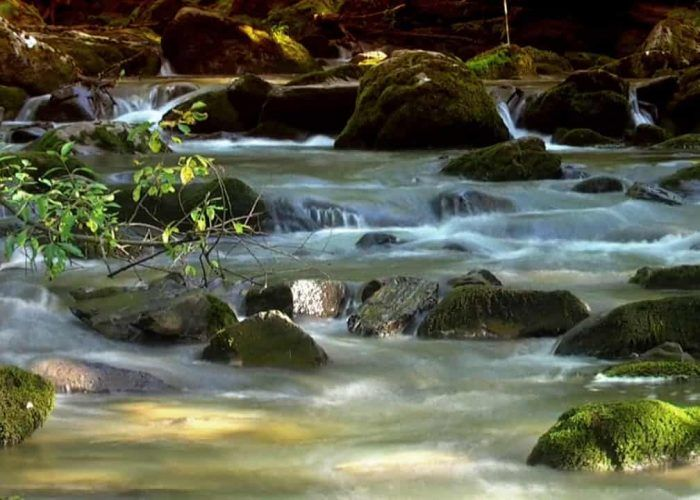 Energizing Mountain Stream