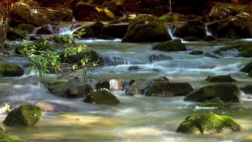 Energizing Mountain Stream