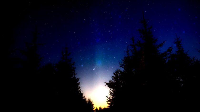 Brilliant Northern Lights