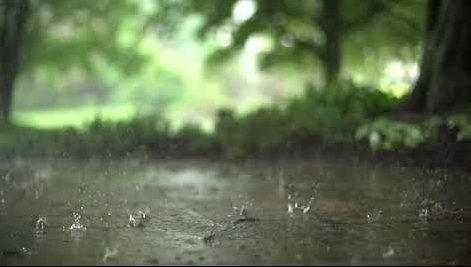 Refreshing Soft Rain