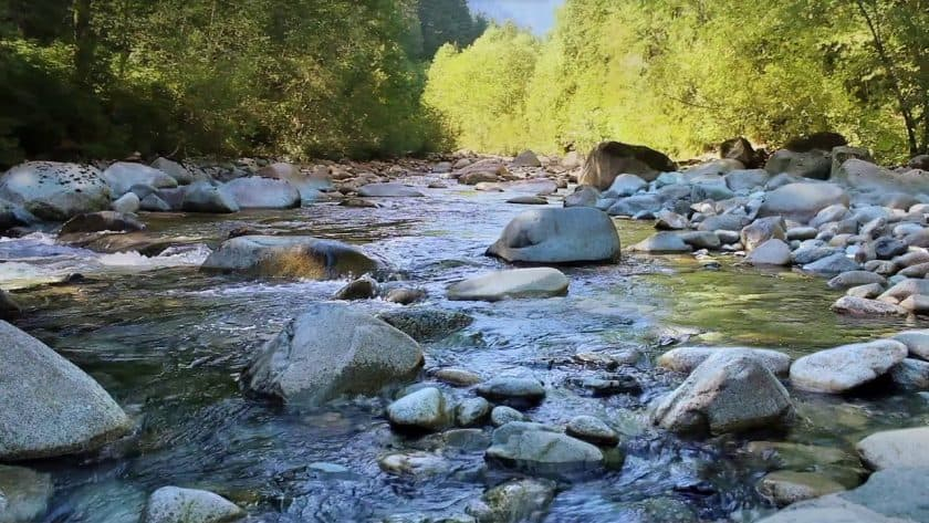 Relax and Renew For a Minute With This Energizing Mountain River