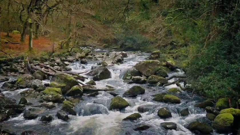 Invigorating Mountain River