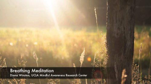 Breathing Meditation by UCLA