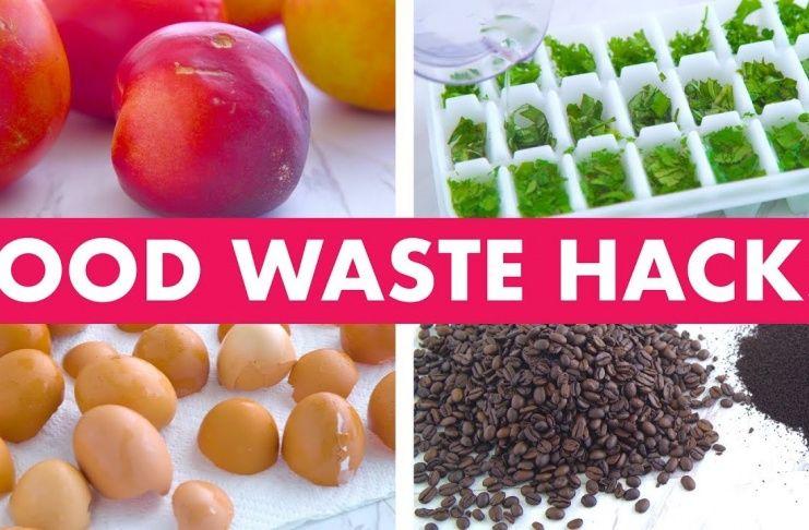 Amazing Food Waste Hacks! Mind Over Munch...