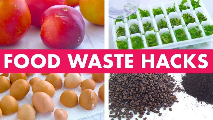 Amazing Food Waste Hacks! Mind Over Munch...