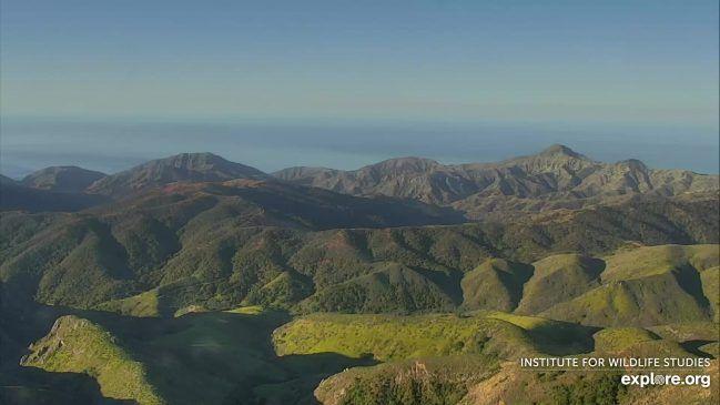 Live View from Mount Diablo in Santa Cruz