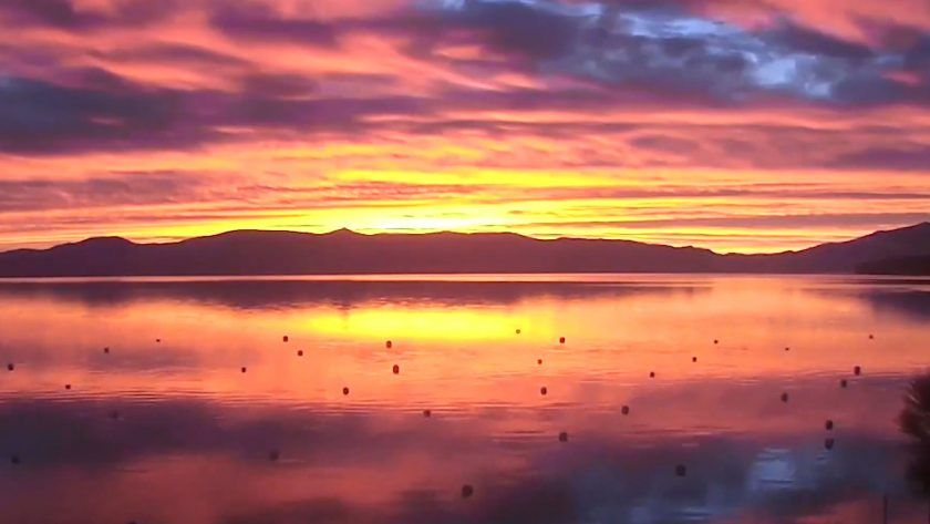 Relax on the West Shore of Lake Tahoe – Explore.org LIVECAM