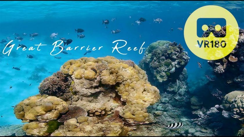 Enjoy a Virtual Dive in Australia's Great Barrier Reef