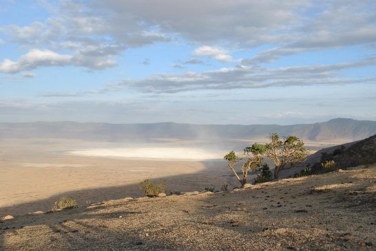 Live View from the Ngorongoro Crater