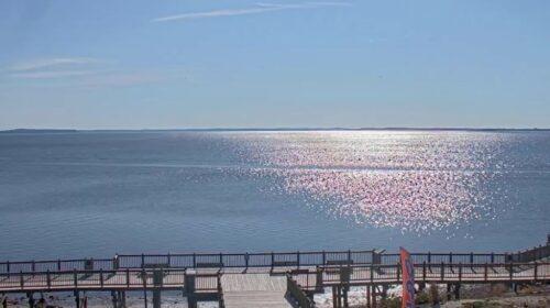 Chesapeake Bay Cam