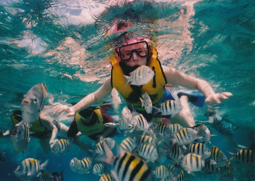 Take a 90 Minute Dive in the Caribbean Sea