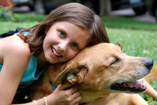 Please Help Someone In Crisis Today: Foster Animals Who Need Temporary Housing