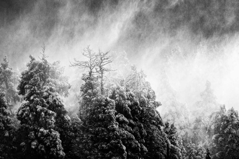 Absorption – Black & White Landscape Photography Artwork in Limited Edition Pigment Prints on 30 x 20 Inch Canvas
