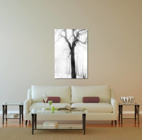 Wall Art Print Display─Inside a Room with a Couch─of the Photograph Frozen Forest Tree by Fine Art Nature and Landscape Photographer Minhajul Haque