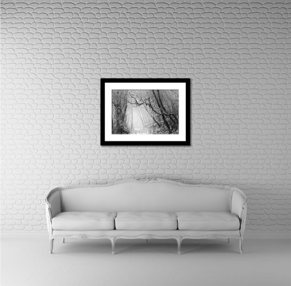 Wall Art Print Display─Inside a Room with a Couch─of the Photograph Dhotery Forest by Fine Art Nature and Landscape Photographer Minhajul Haque