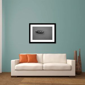 Fishing - Limited Edition Artwork by Minhajul Haque. A Photography Print Made with Love and Passion to Make You Feel Special and Serene. Here in This Image, It Is an Interior Scene with the Wall Art Print. Buy Limited Edition Pigment Prints of Artistic Nature and Landscape Photos for Your Home and Office Interiors. Bedroom Wall Art, Dining Room Wall Art, Living Room Wall Art, Kitchen Wall Art, Bathroom Wall Art, Kid's Room Wall Art, Office Wall Art, and Sitting Room Wall Art for Sale Online in India