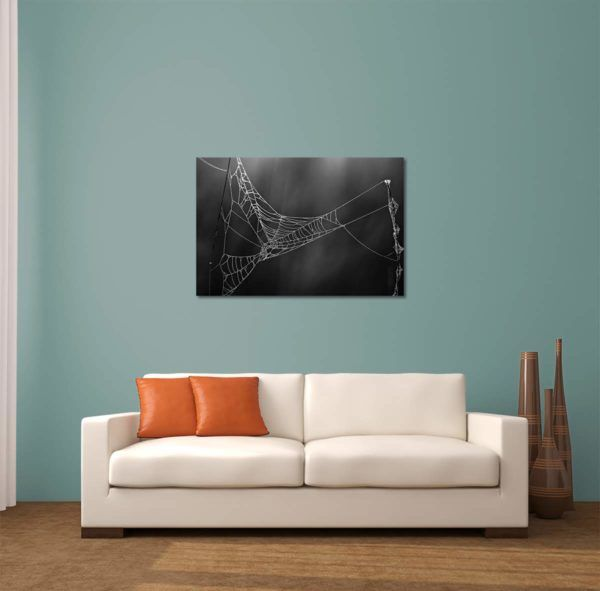 Glowing Cobweb - Limited Edition Artwork by Minhajul Haque. A Photography Print Made with Love and Passion to Make You Feel Special and Serene. Here in This Image, It Is an Interior Scene with the Wall Art Print. Buy Limited Edition Pigment Prints of Artistic Nature and Landscape Photos for Your Home and Office Interiors. Bedroom Wall Art, Dining Room Wall Art, Living Room Wall Art, Kitchen Wall Art, Bathroom Wall Art, Kid's Room Wall Art, Office Wall Art, and Sitting Room Wall Art for Sale Online in India